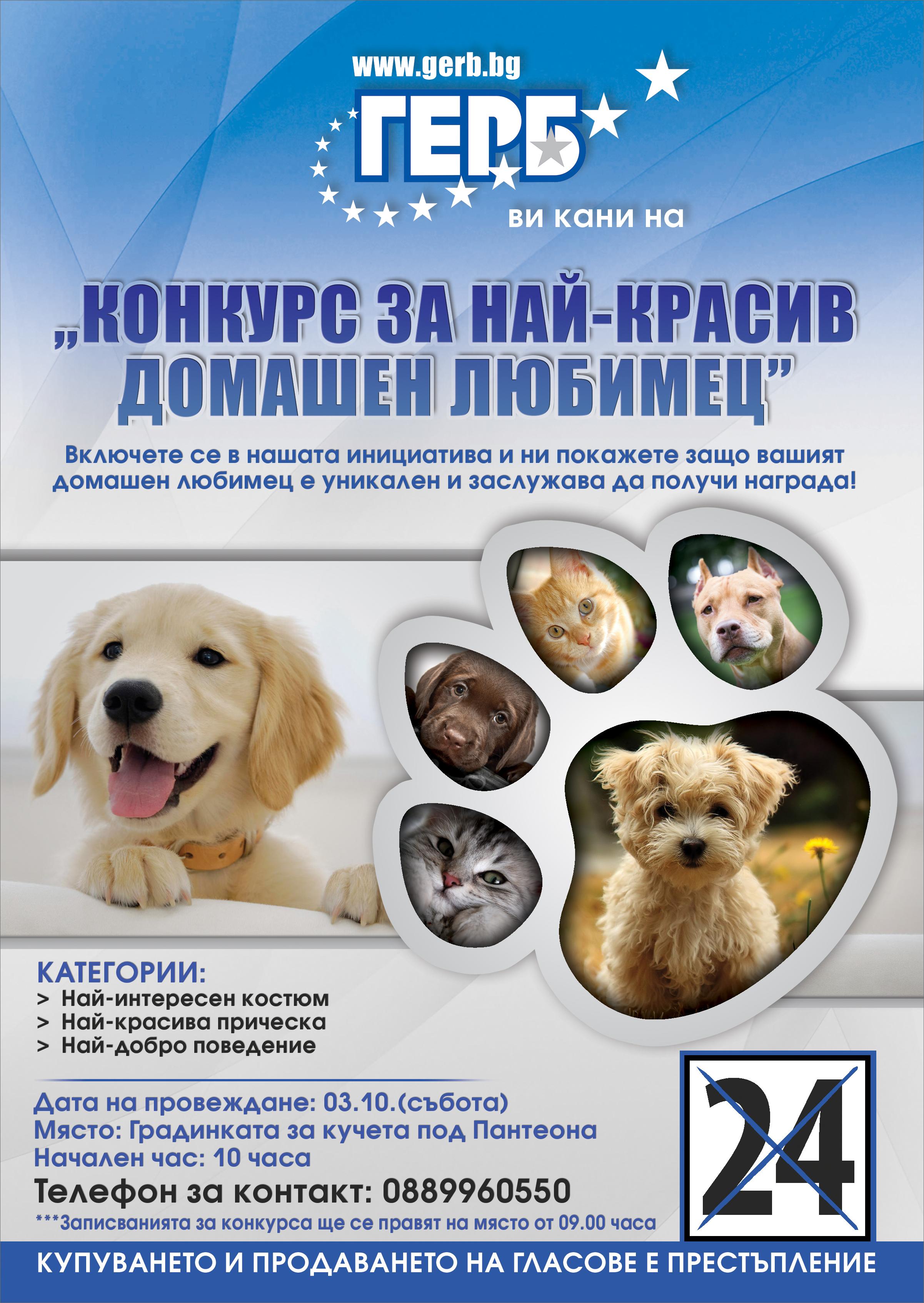 izbori_2015_kassabova_3